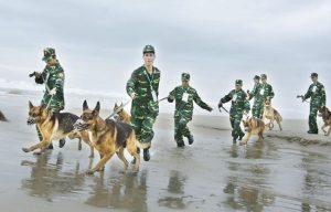 Bộ đội biên phòng Việt Nam